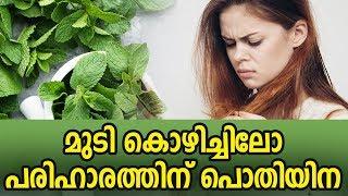 മുടി കൊഴിച്ചിലോ പരിഹാരത്തിന് പൊതിയിനHealthy kerala | Health tips | Hair care | Hair tips | Hair