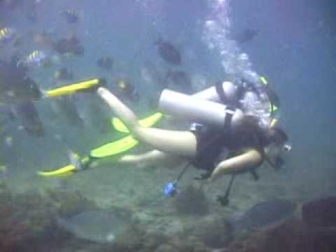 Scuba diving with Chico's Dive Shop at Los Arcos in Puerto Vallarta Mexico