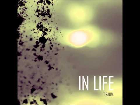 T Raum   In Life feat  Simple One Fux Remix   New Jhruza Records