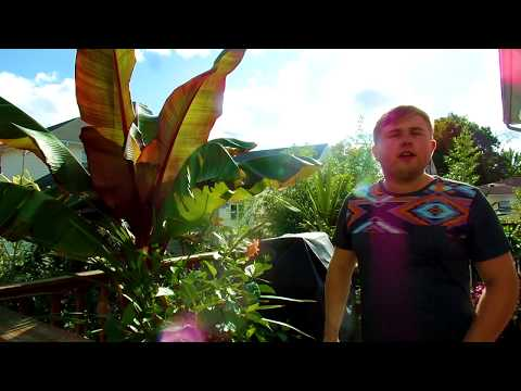 Tropical Garden Tour with Author of Paradise In My Yard A Garden Design Guide Dennis Lytkine