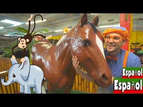 Blippi Español Los Animales de la Selva en este Video Infantil | Videos Educativos para Niños