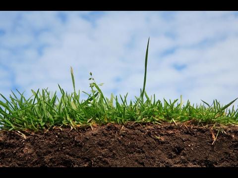 Основы почвоведения
