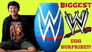 \WWE (World Wrestling Entertainment) TOYS EGG SURPRISE with John Cena & Undertaker