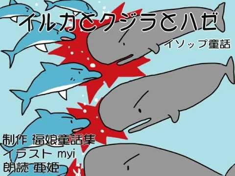 イルカとクジラとハゼ (Việt Sub)