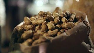 Арахис: земляной орех или что-то другое?