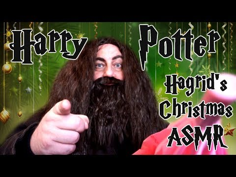 Harry Potter Christmas At Hagrids ASMR