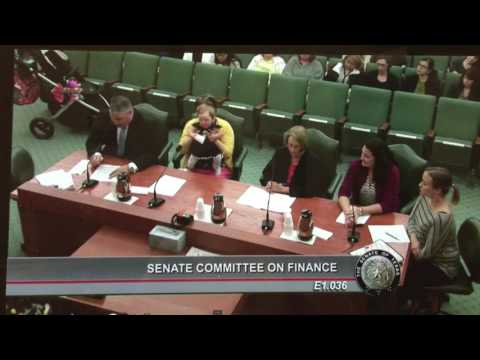 Texas Senate Finance Committee Medicaid Detective Drake Testimony