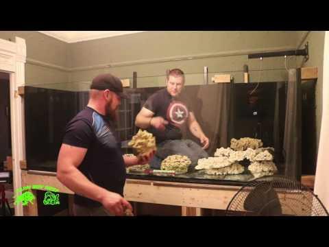 Aquascaping  the 700 Gallon Phoenix reef  tank