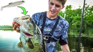 GIANT Bass EAT These Swimbaits! (Land Of Giants Tour Ep. 1)