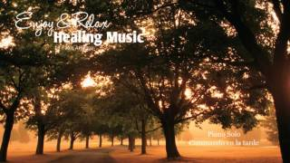 The most  relaxing Piano Solo ever ( walking in the evening ) Pablo Arellano