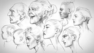 Head Studies 3  Profile Views