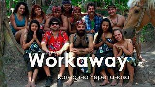Workaway: волонтерство в обмен на жилье и еду. Катерина Черепанова