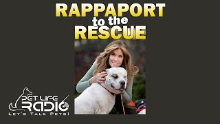 Rappaport To The Rescue  Paw 13:  Celebrating ADOPT a SHELTER DOG month with Matt Bershadker!