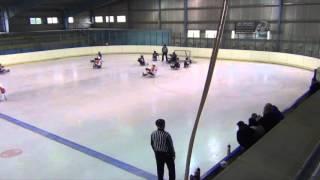 Sparta Praha sledge hokej vs SHK Lapp Zlín