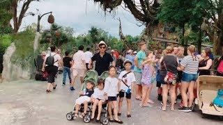 Thăm quan thế giới Avatar trong đời thực | Disney Animal Orlando | Ly Hai Minh Ha Family