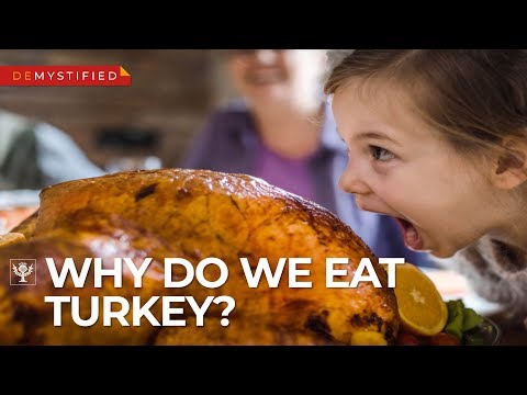 Morgen - Why Do We Eat Turkey at Thanksgiving?