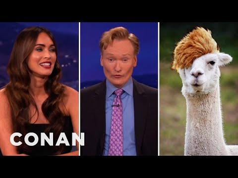 Megan Fox Assigns Conan His Spirit Animal