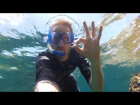 Thailand, Hing Won Bay Koh Tao March 2017, Snorkeling underwater footage.