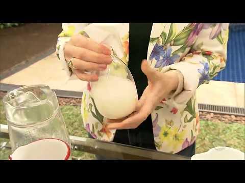 Aprenda a fazer um inseticida com leite para proteger suas plantas