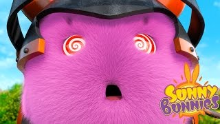 Videos For Kids | Sunny Bunnies SUNNY BUNNIES HYPNOTIZED | Funny Videos For Kids