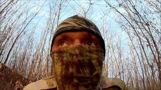 Охота на фазана с воздушкой Hatsan 125 видео