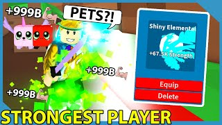 I Become The Strongest With This Overpowered Pet In Roblox Fighting Simulator