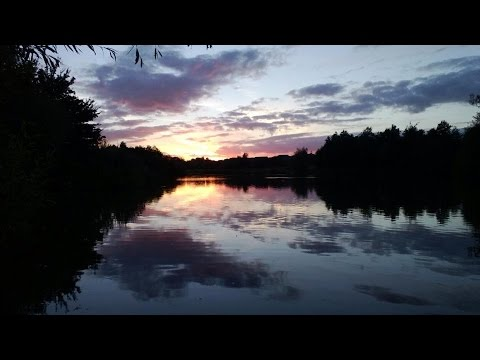 Park Lake || Day Ticket Carp Fishing