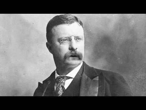 Teddy Roosevelt Interview
