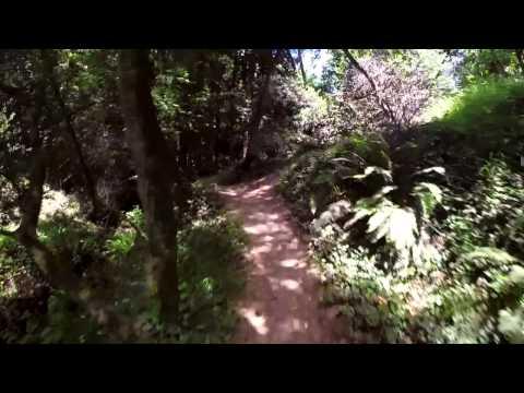 Joaquin Miller Park 6-21-14