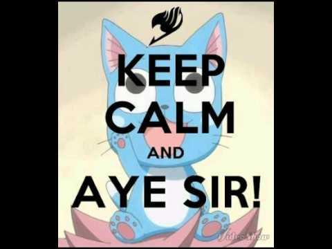 Fairy Tail - Happy's