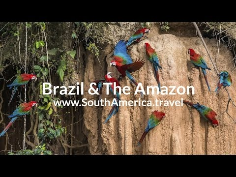 Rio de Janeiro & the Amazon Rainforest Tour: Top 10 South America Tours
