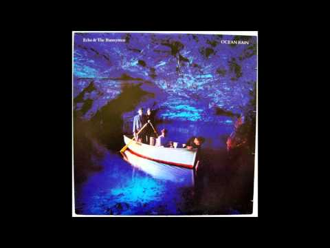 Echo And The Bunnymen my kingdom cover 2013 mp3