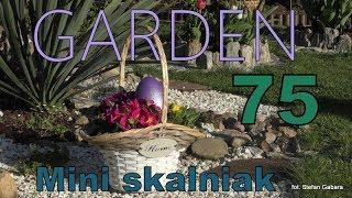 GARDEN (75) - Mini rockery - Mini skalniak - Jakie kwiaty na skalniak?