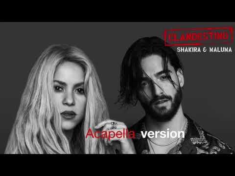Shakira Ft Maluma Clandestino Acapella/ No Music