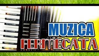 ACORDEON FERMECAT 2019 - MUZICA DE PETRECERE FERMECATA 2019