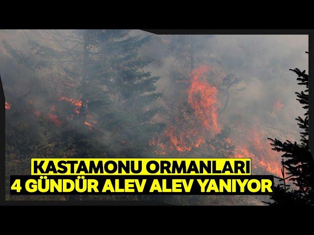 Kastamonu'da 4 Gündür Devam Eden Orman Yangınları Söndürülemiyor
