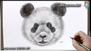 как нарисовать ПАНДУ карандашом. Портрет животного