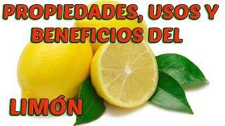 EL LIMÓN LA MEJOR FRUTA MEDICINAL (PROPIEDADES, USOS Y BENEFICIOS) | LifeStyle