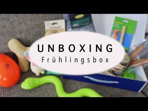 Unboxing Tiierisch.de FRÜHLINGSBOX für HUNDE | Kobeswelt