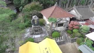 西福寺 空撮