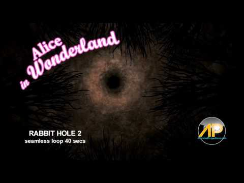 Alice in Wonderland RABBIT HOLES