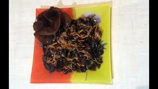 Грибы Иудино ухо, Муэр, Древесный гриб - САЛАТ 2, как корейская морковка