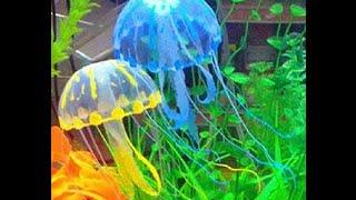 видео Кормушки для аквариумов купить в Москве.