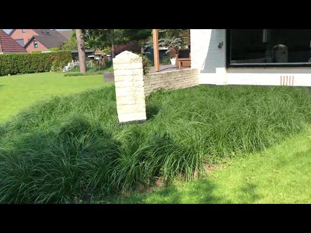 Rondleiding door een groene, karakteristieke moderne tuin