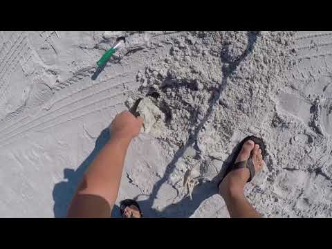 Is that gold?! I finally made it back to the beach. Metal detecting. TreasurePro live digs.