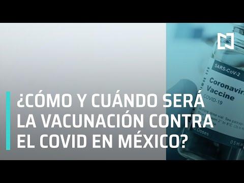 Vacuna contra Covid-19 en México: Cuándo y quién recibirá la vacuna - En Punto