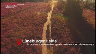 Ein Smuttur til Lüneburger Heide, Celle og Hannover!