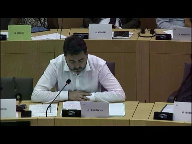 Intervención en el comité de asuntos económicos y monetarios