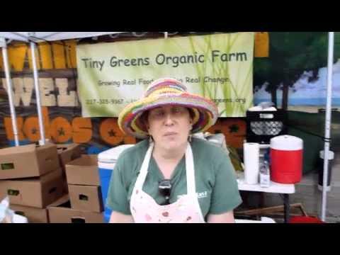 Tiny Greens Organic Farm