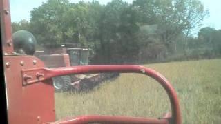 case ih 2588 vs 1688 combine soybean harvest